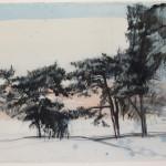 Baum13
